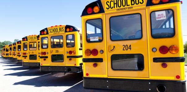 Software para transporte escolar